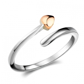 Exquisite Silver Band Ring